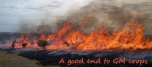 fire crops
