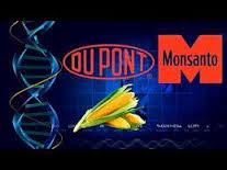 Monsanto Dupont