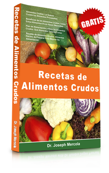 alimentos-crudos-ebook